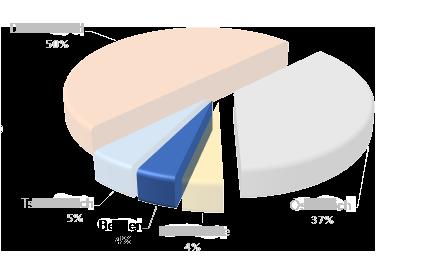 belgium_cz